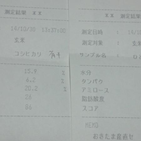 DSC_0041_2.JPG